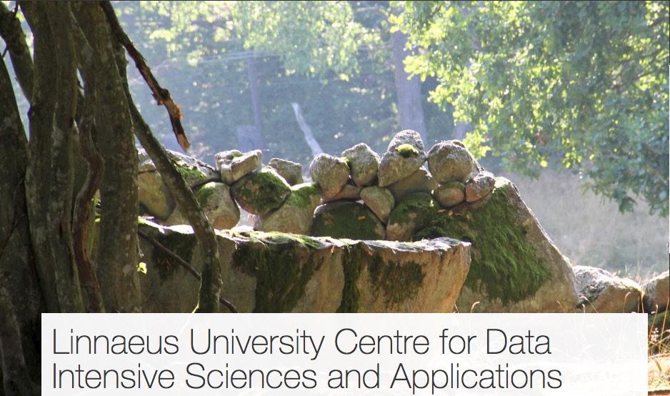 DISA är Linnéuniversitetets spetsforskningsmiljö som arbetar med insamling, analys och nyttogörande av stora datamängder. Centrat har sin tyngdpunkt inom datavetenskap, men har ett mångvetenskapligt perspektiv genom ett samarbete mellan forskare från universitetets samtliga fakulteter.